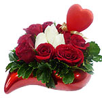 Breathtaking Red and White Roses for Valentine s Day