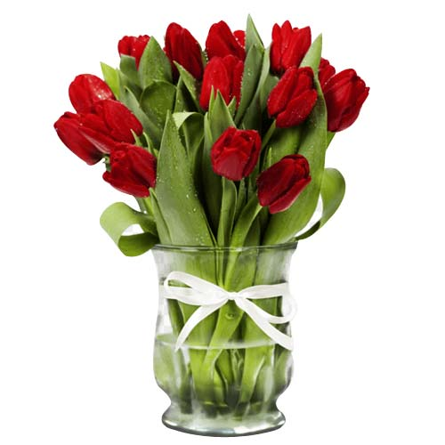 Exquisite Bunch of Twelve Red Tulips on the Occasion of Valentines Day