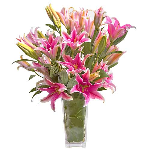 Seasonal Collection of Pink Lilies with Babys Breath for Someone Special on Valentines Day
