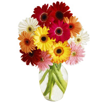 Seasonal Flowers Arrangemant at Low Cost