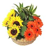 Fresh Flowers Basket to Singapore