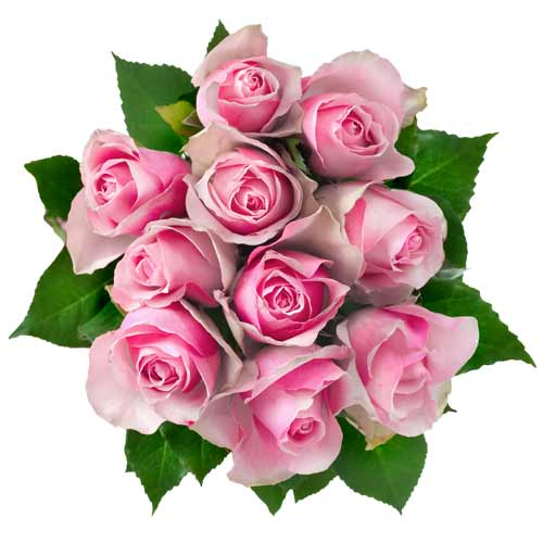 Joyful Valentines Bouquet of One Dozen Pink Roses