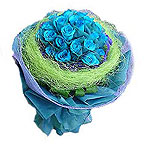 Soft 1 Dozen Blue Roses on Valentines Day for Your Loved Ones