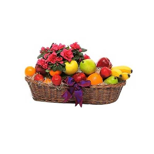 Fruit Basket to Singapore on Same Day